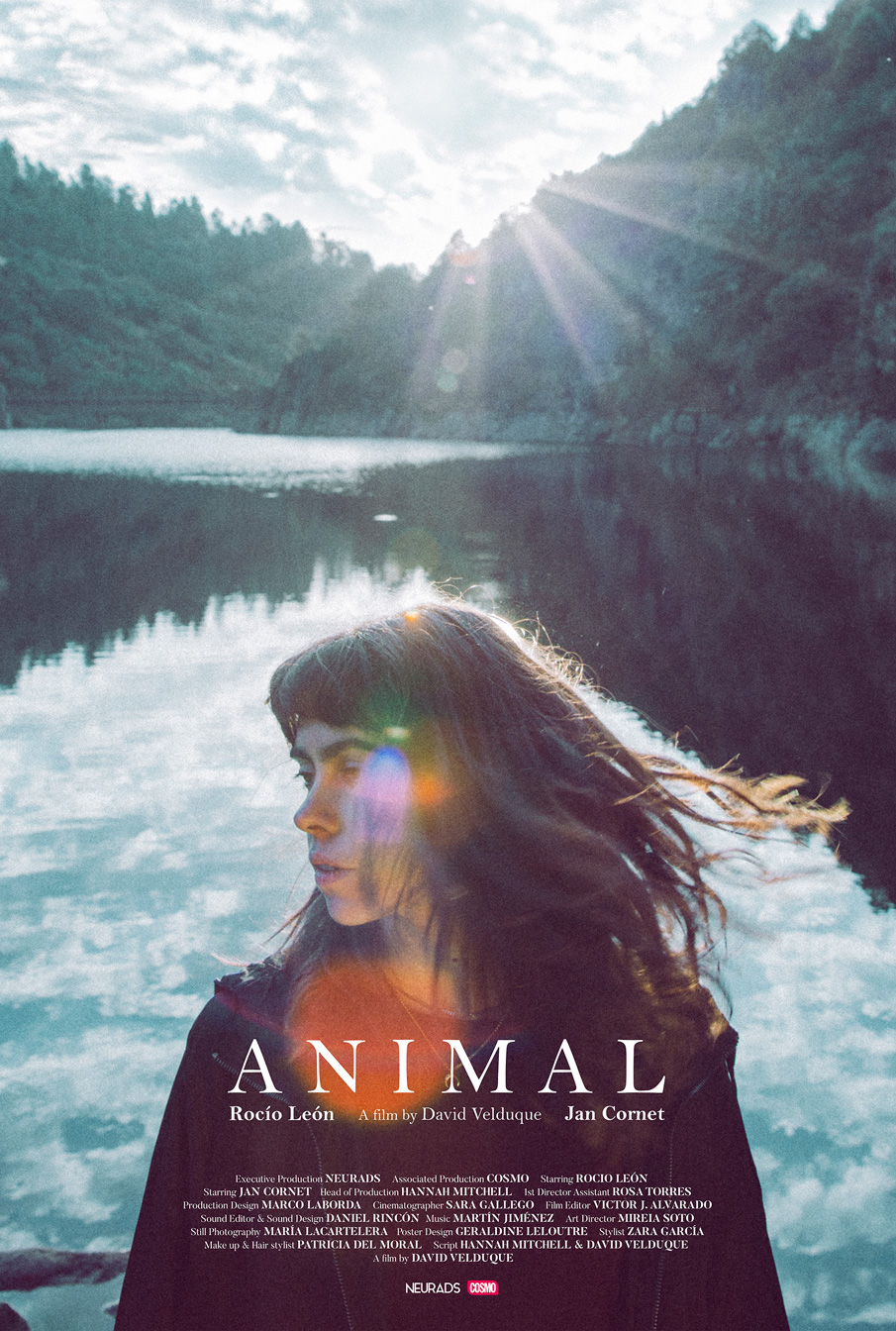 Sara_Gallego_Animal_1