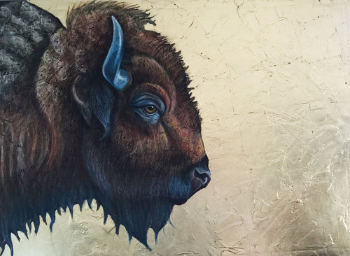 american+bison[1].jpg