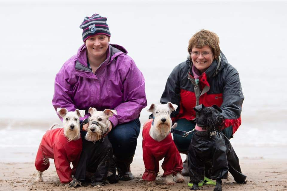 Get involved - There are many ways you can get involved with Schnauzerfest, including joining a walk, making a donation or buying a gift