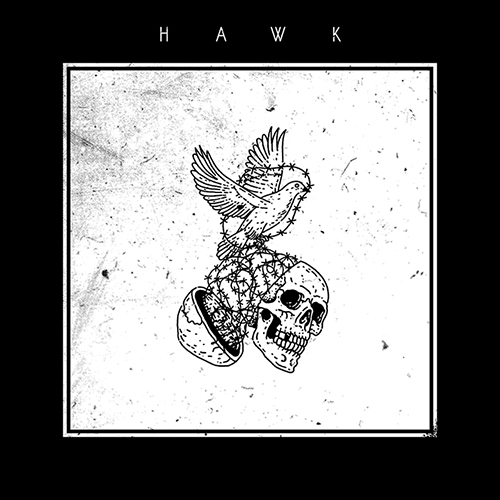 Hawk_Cover_smarturl.jpg