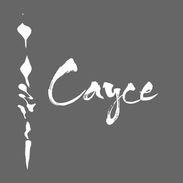 logo_grey (1).jpg