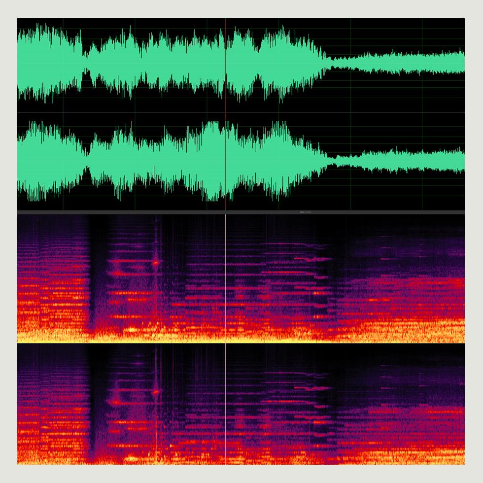 sohled-sound.jpg