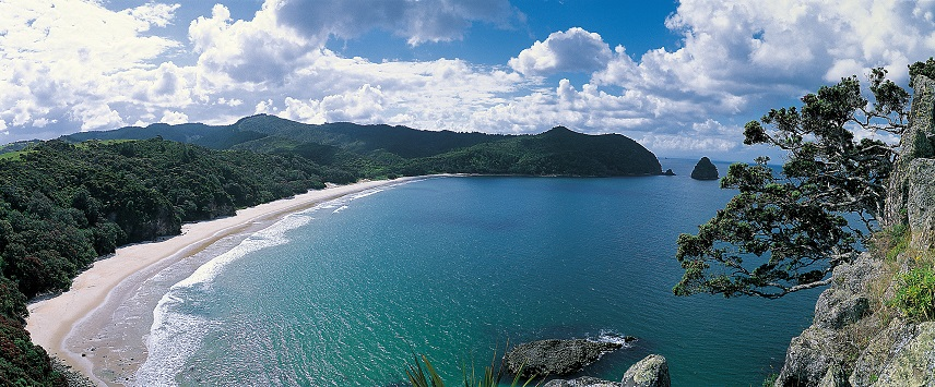 New Chums Beach_LR.jpg
