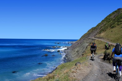 Rimutaka-Cycle-Trail.jpg