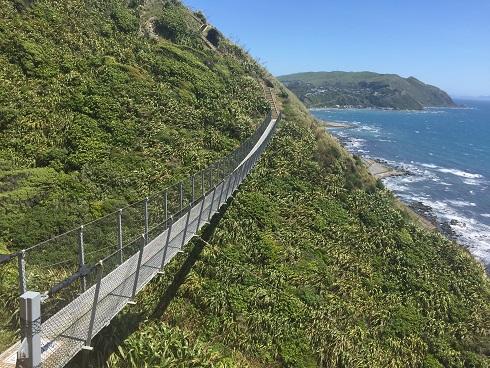 Paekakariki Escarpment Trail.jpg