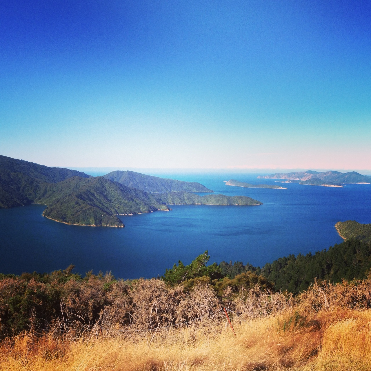 Queen Charlotte Track in March.jpg