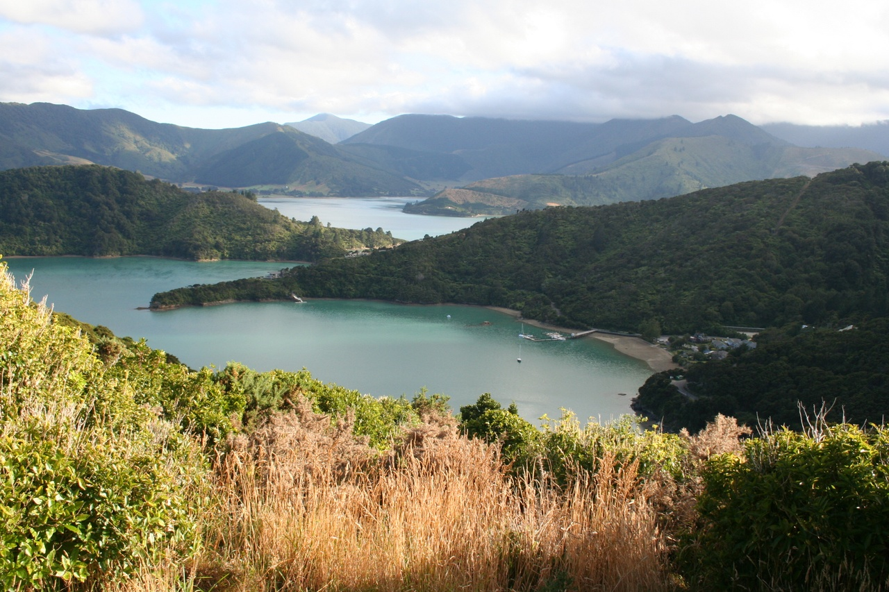 Ridgeline, The Queen Charlotte Track.jpg