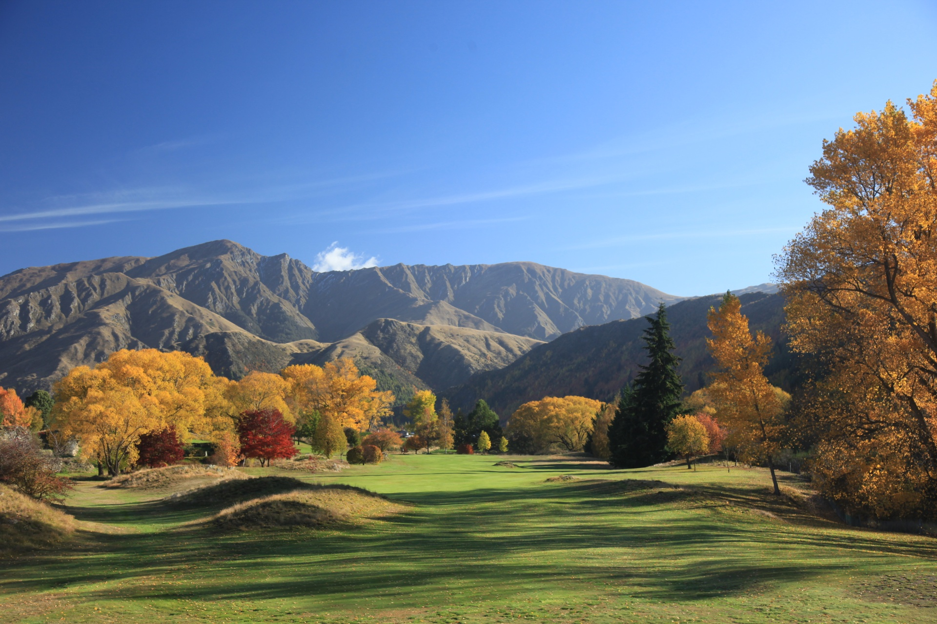 2851-Arrowtown-Golf-Club-Gary-Lisbon.jpg