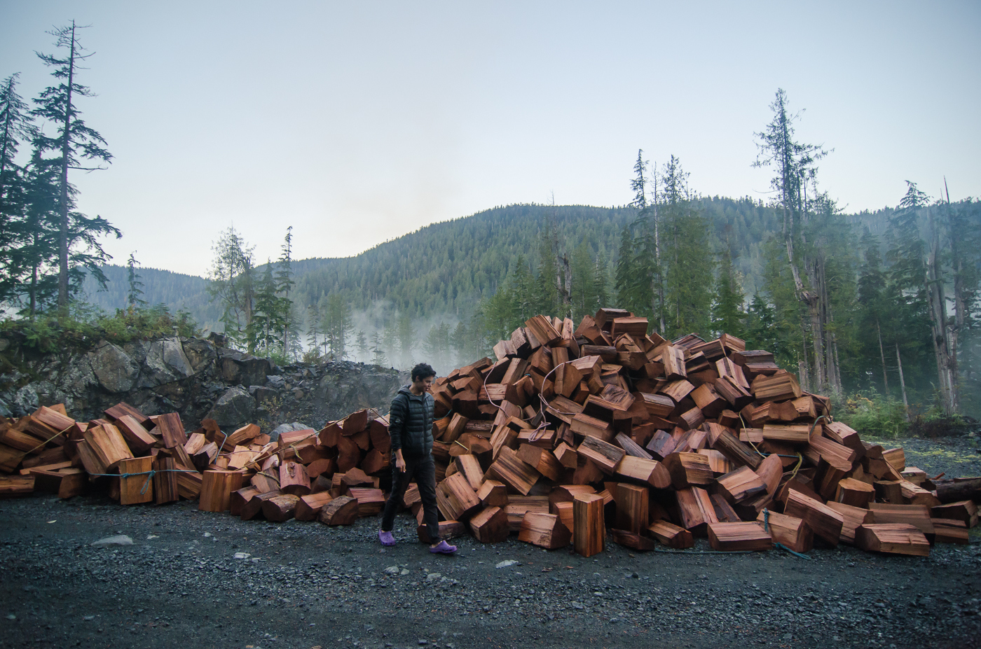 Shakeblocks in the Walbran Valley.  These blocks will be used for roofing shingles.