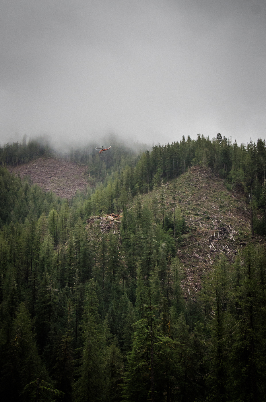 Heli-Logging in  the Walbran Valley