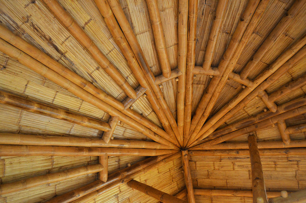 ceiling-detail2.jpg