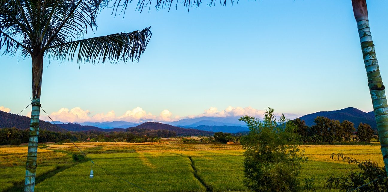 view-from-mala-dhara-yoga-retreats-chiang-mai-e1521953896585.jpg