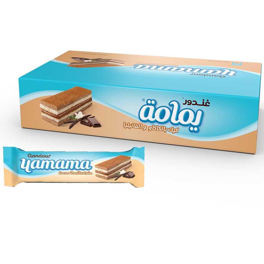 COCOA VANILLA CAKE
