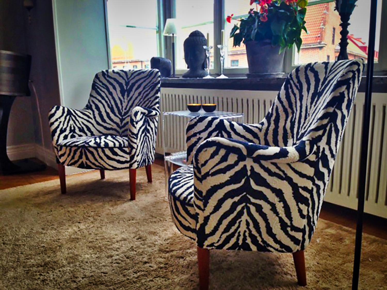 malmsten zebra rdigerad.jpeg