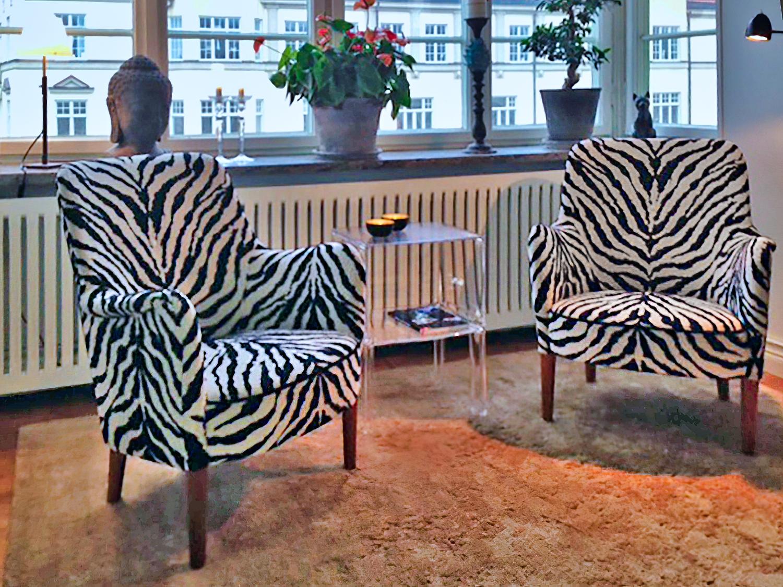malmsten zebra 2 redigerad-edit.jpg