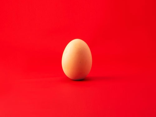 egg-red-background-(used-for-missing-photos)-500px.jpg