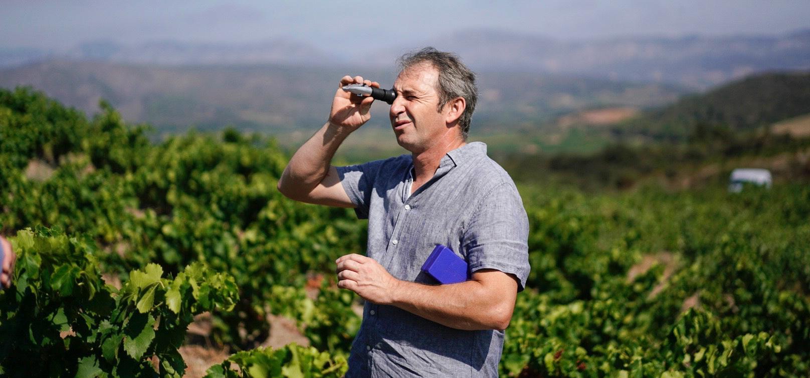 Luc Devot - Estagel – Roussillon