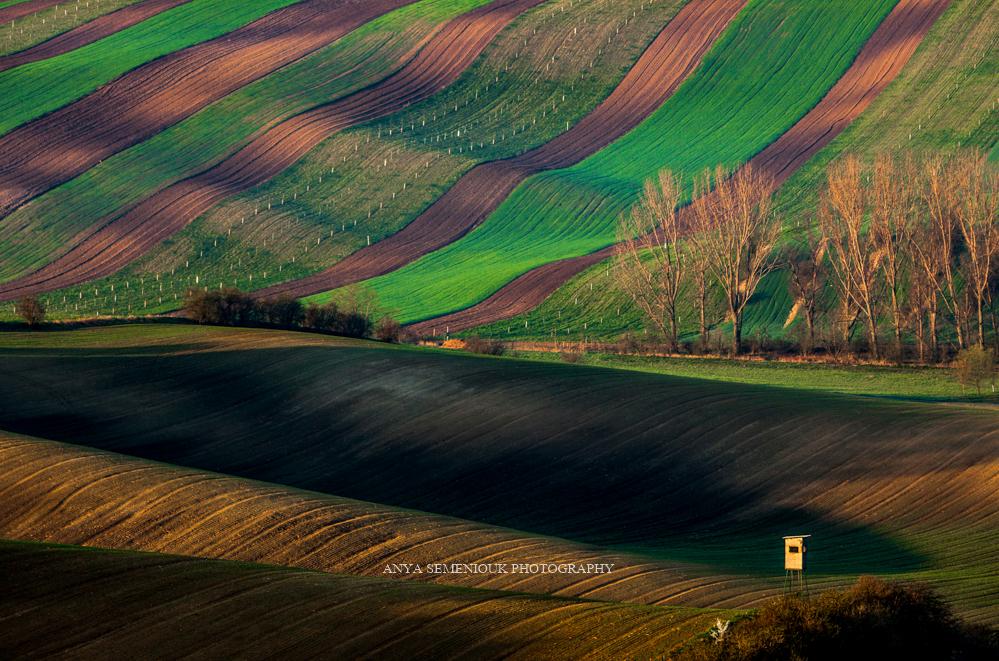 Photo Anya Semeniouk
