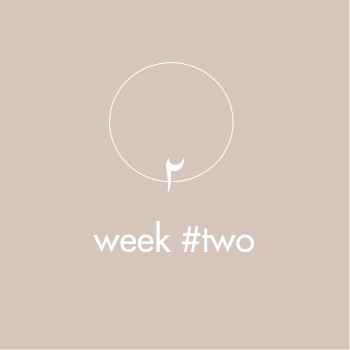 meditation-program-weektwo.png