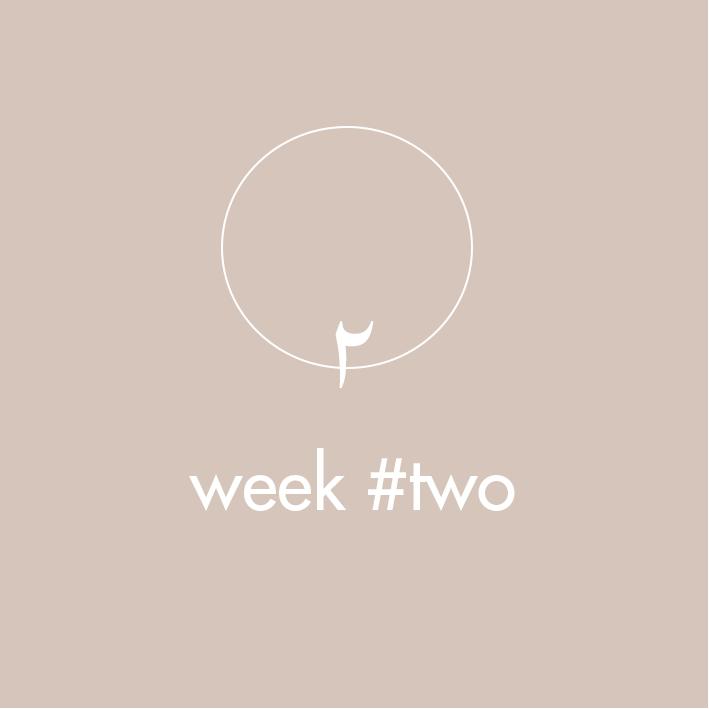 meditation-program-weektwo.png