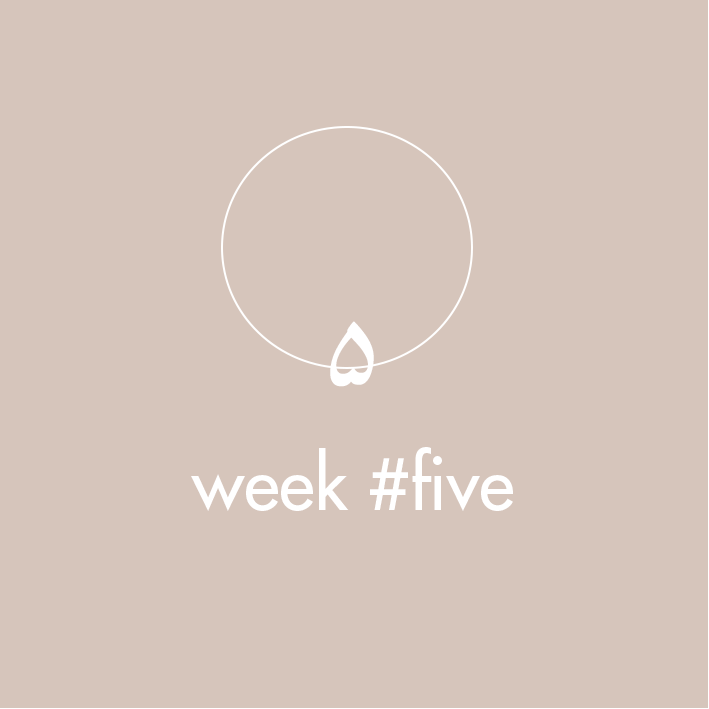 atelier-the-che-meditation-program-weekfive.png