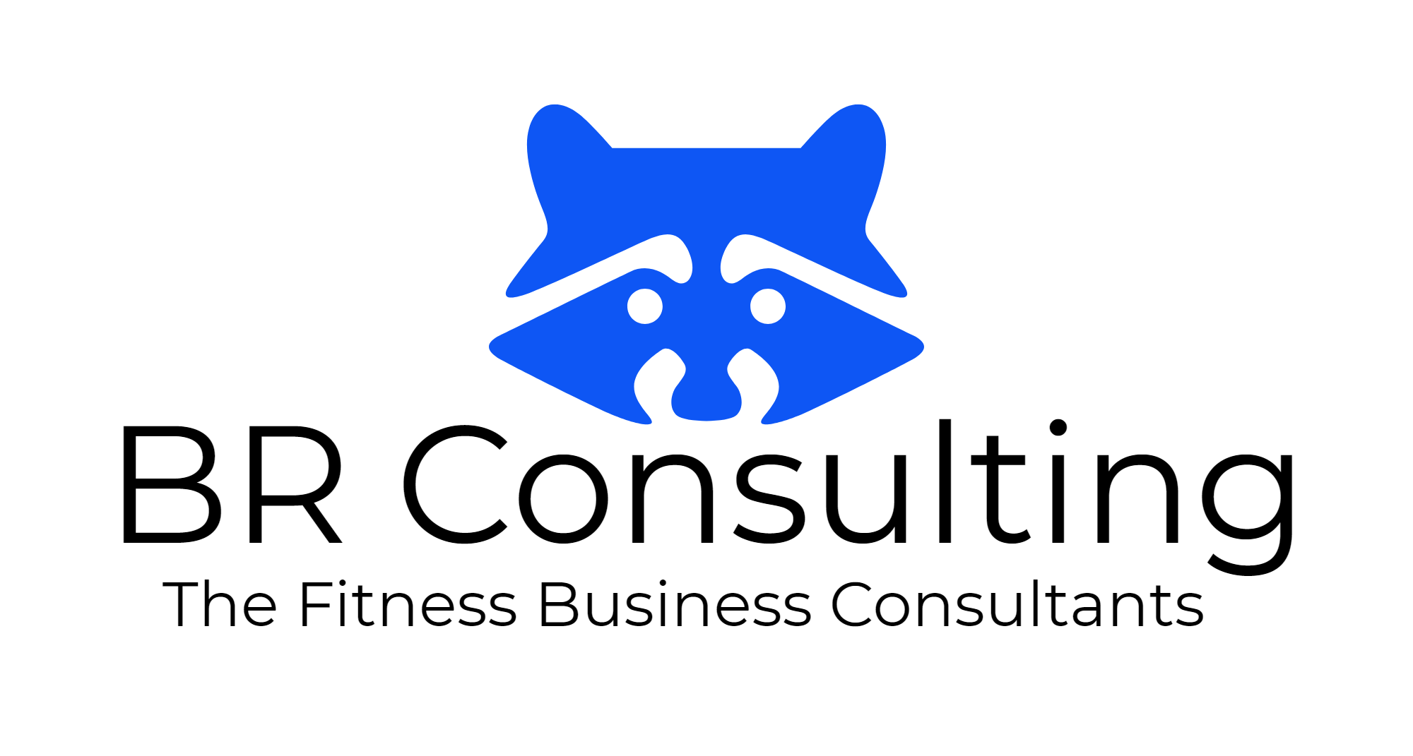 BR Consulting-logo blue.png