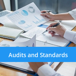 Black Raccoon Audits and standards - Copy.jpg