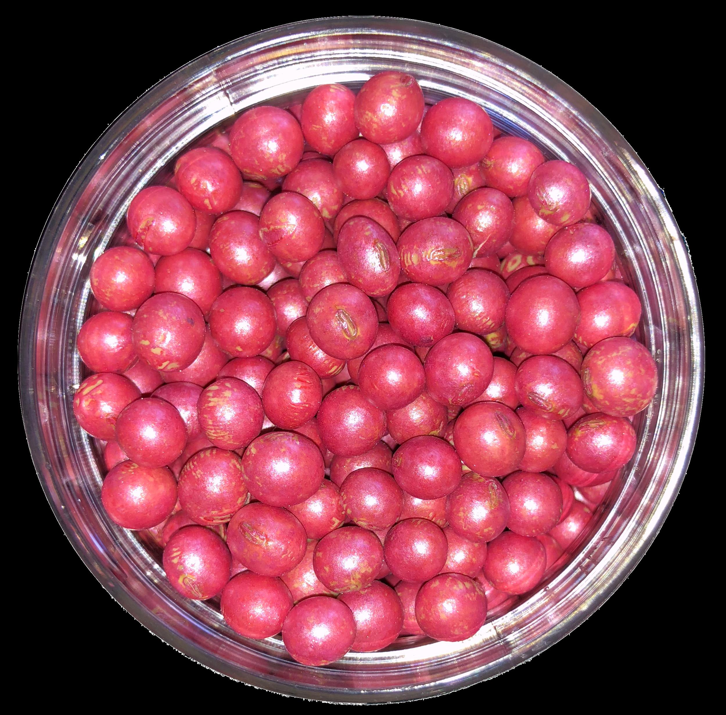 Dry Soybean Seed.jpg