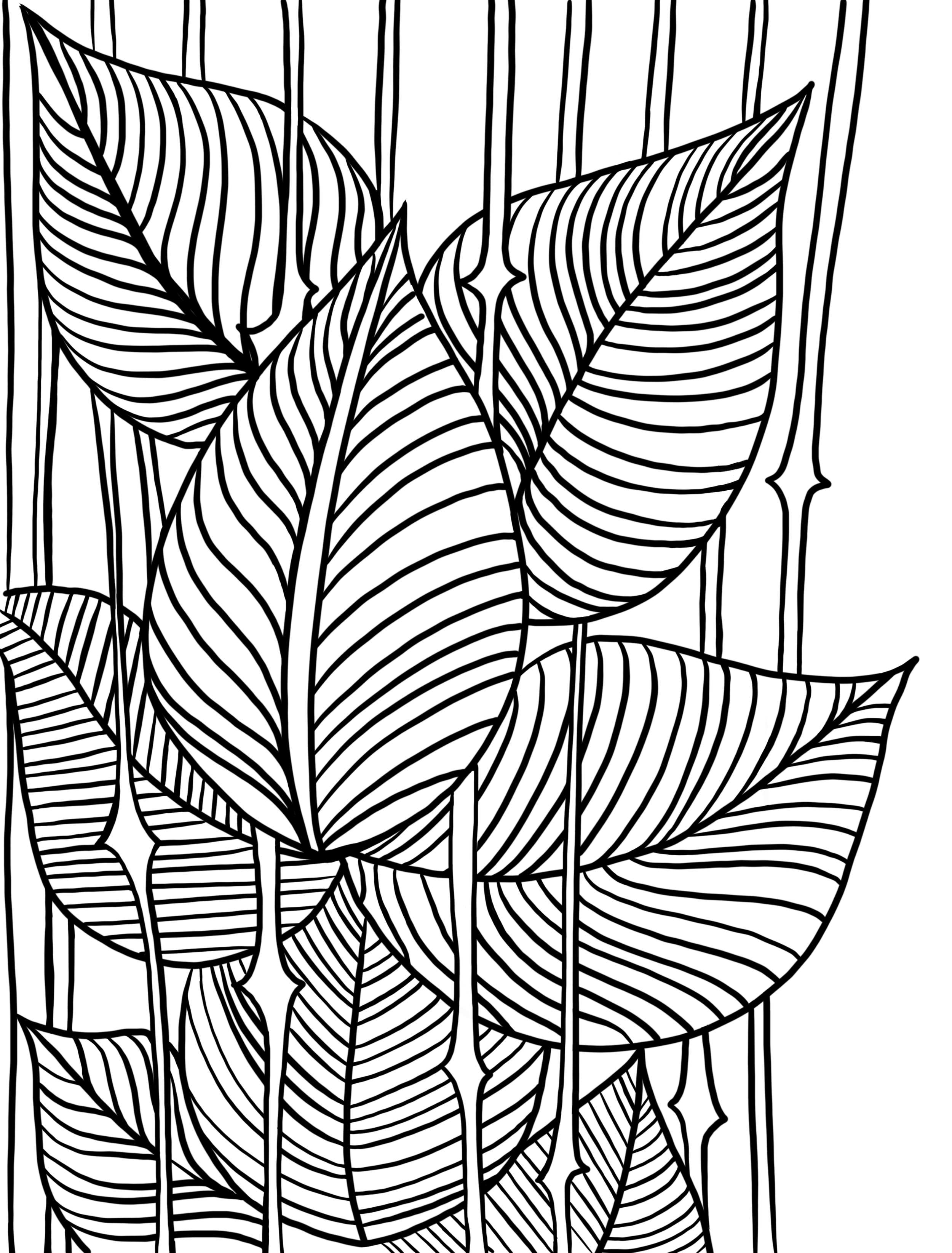 Line_Leaves_2017-11-05.png