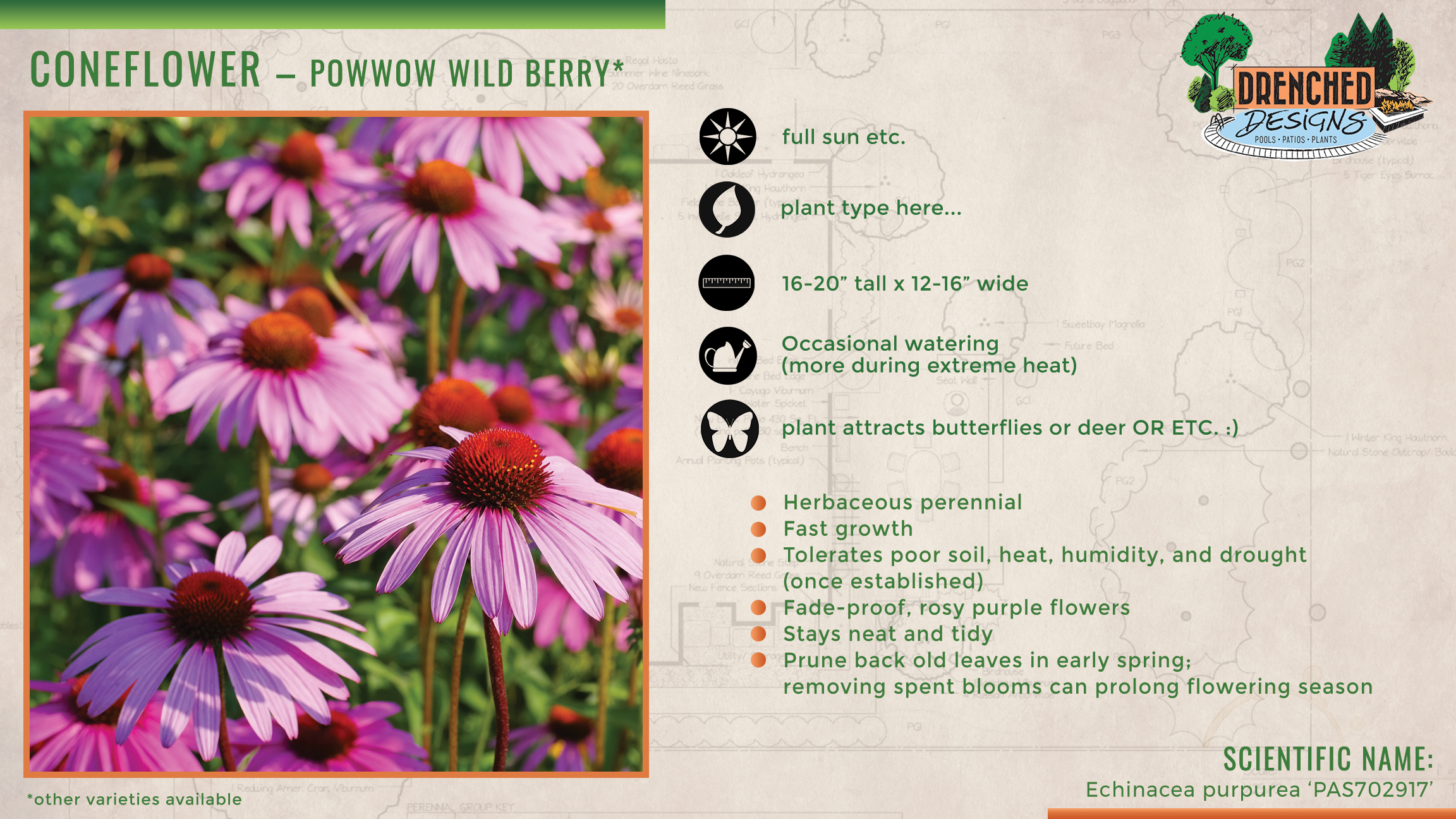 Add-on Deliverable - Plant Care Cards