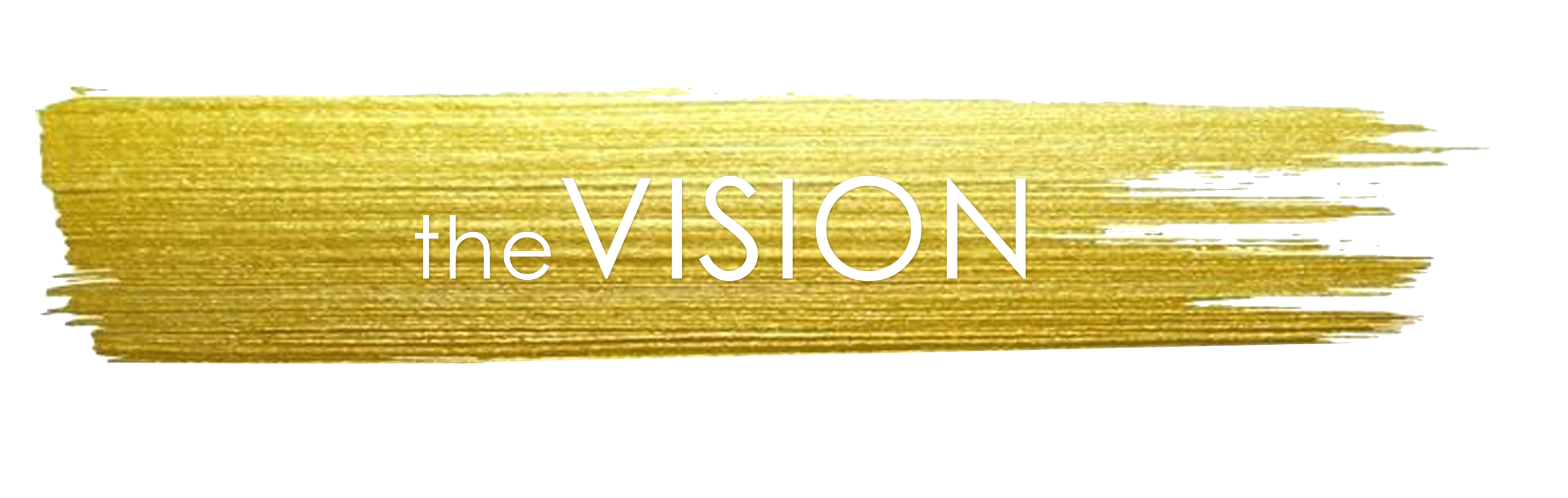 the vision 2.png