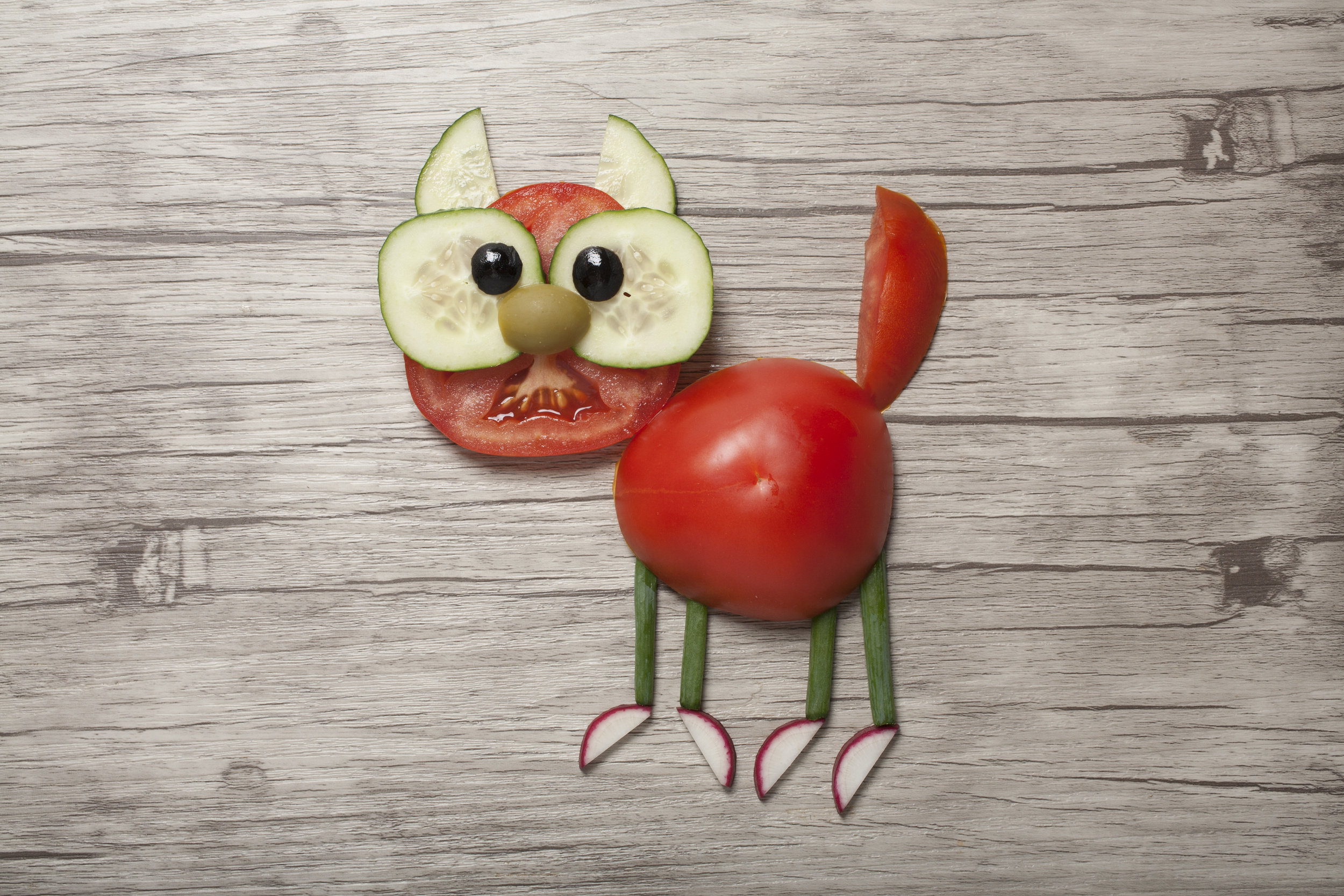 vegetable cat figure.jpg