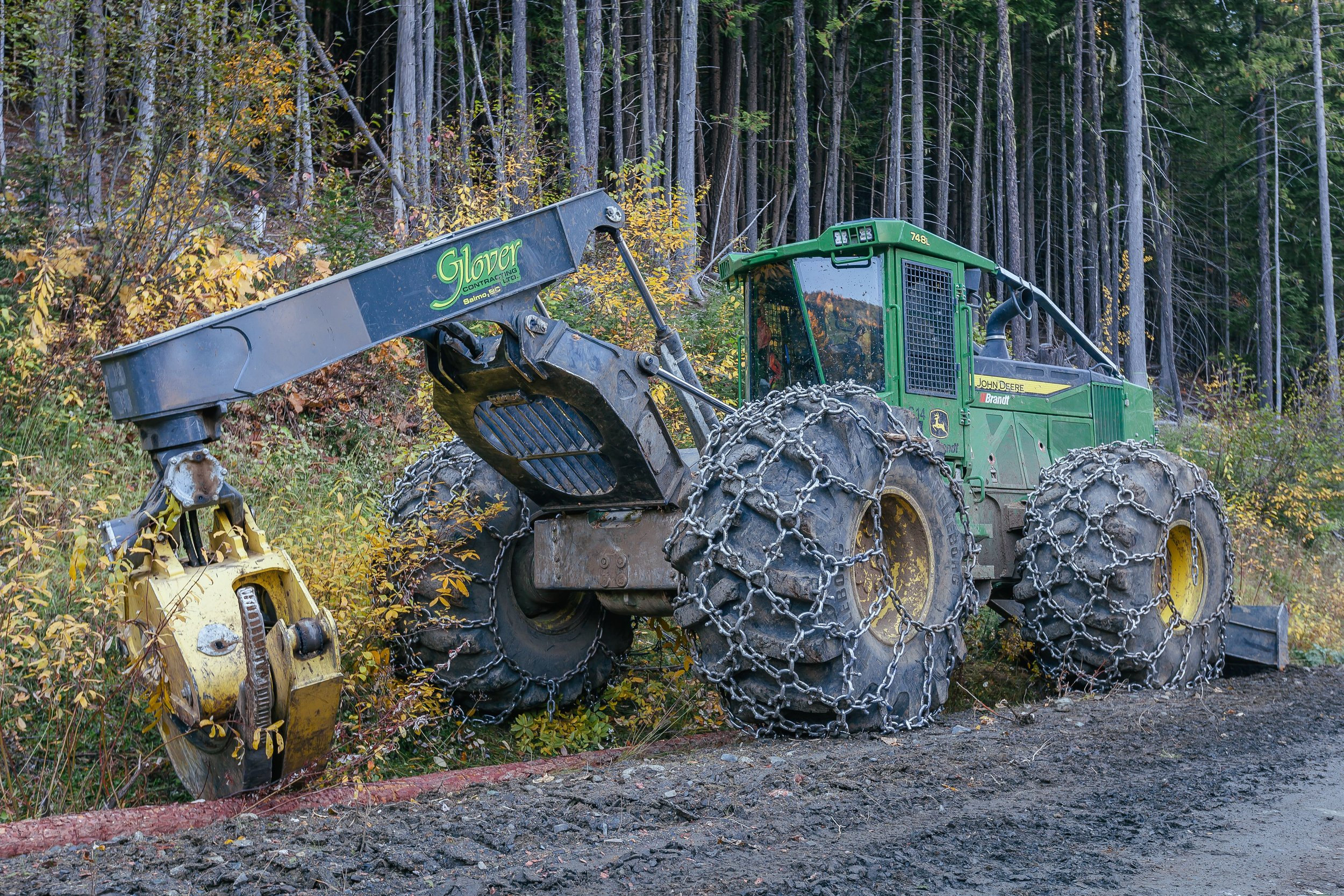 ForestManagement_Harvesting_Gallery_3.jpg