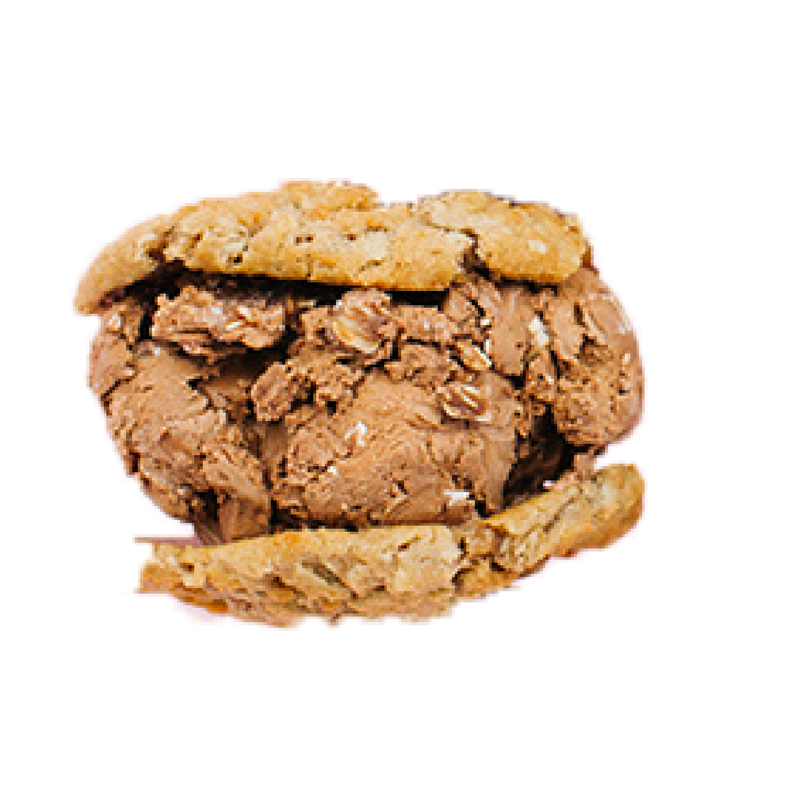 Half Baked   Oatmeal Cookies  No Bake Cookie Ice Cream