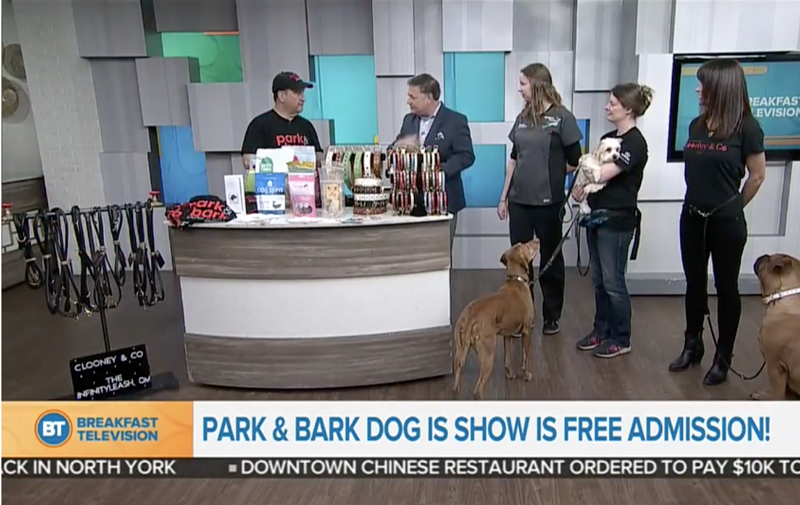 Breakfast Television - Park & Bark Dog Show