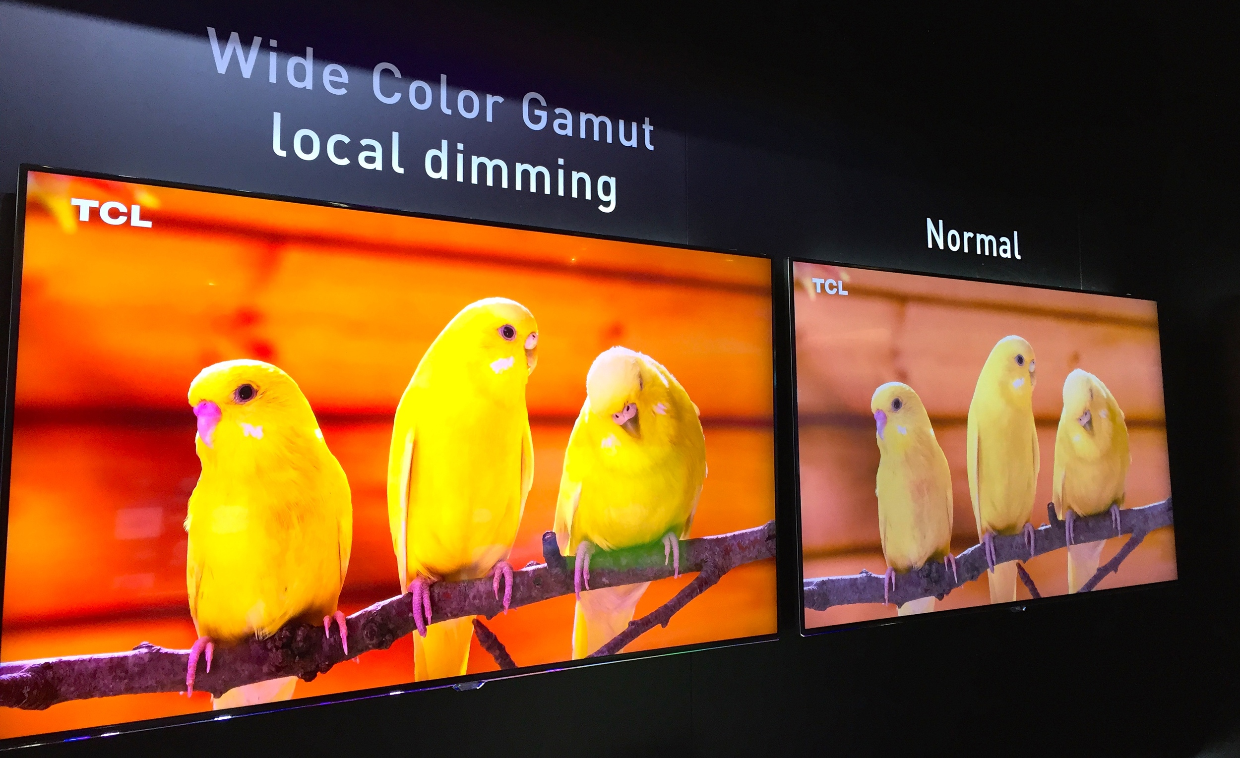 TCL showed off a beautiful local dimming Wide Color Gamut UHD TV with Quantum Dottechnology from Nanosys and 3M at CES 2015. This set featured gorgeous color and high dynamic range for a lifelike image.