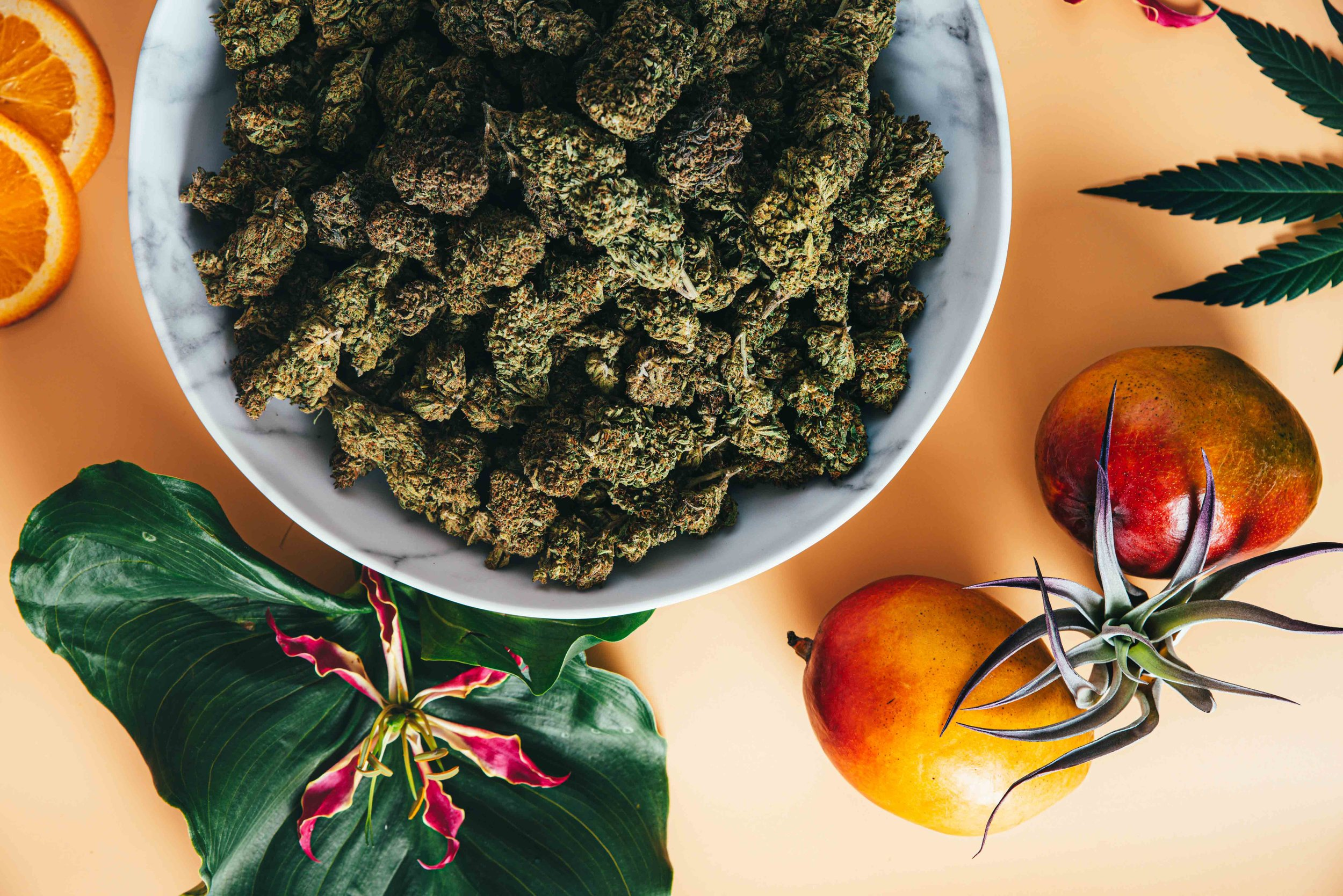 Benefits of hemp on the environment.jpg