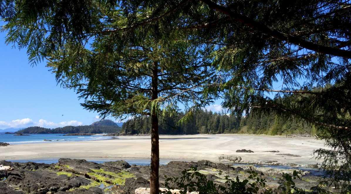 kapoose-creek-beach.1400x0.jpg