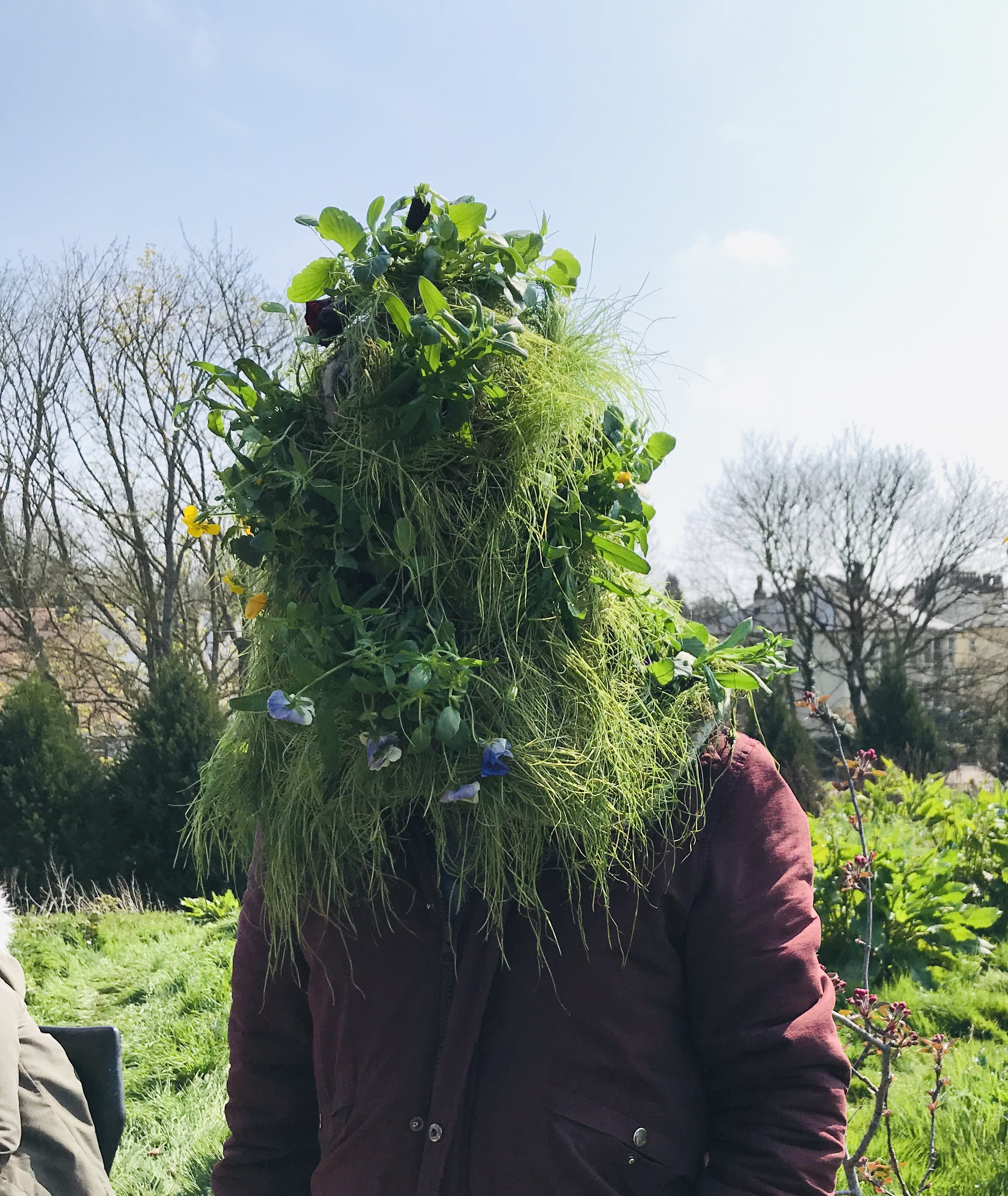 Trying out an example 'grass head' before growing gets underway.