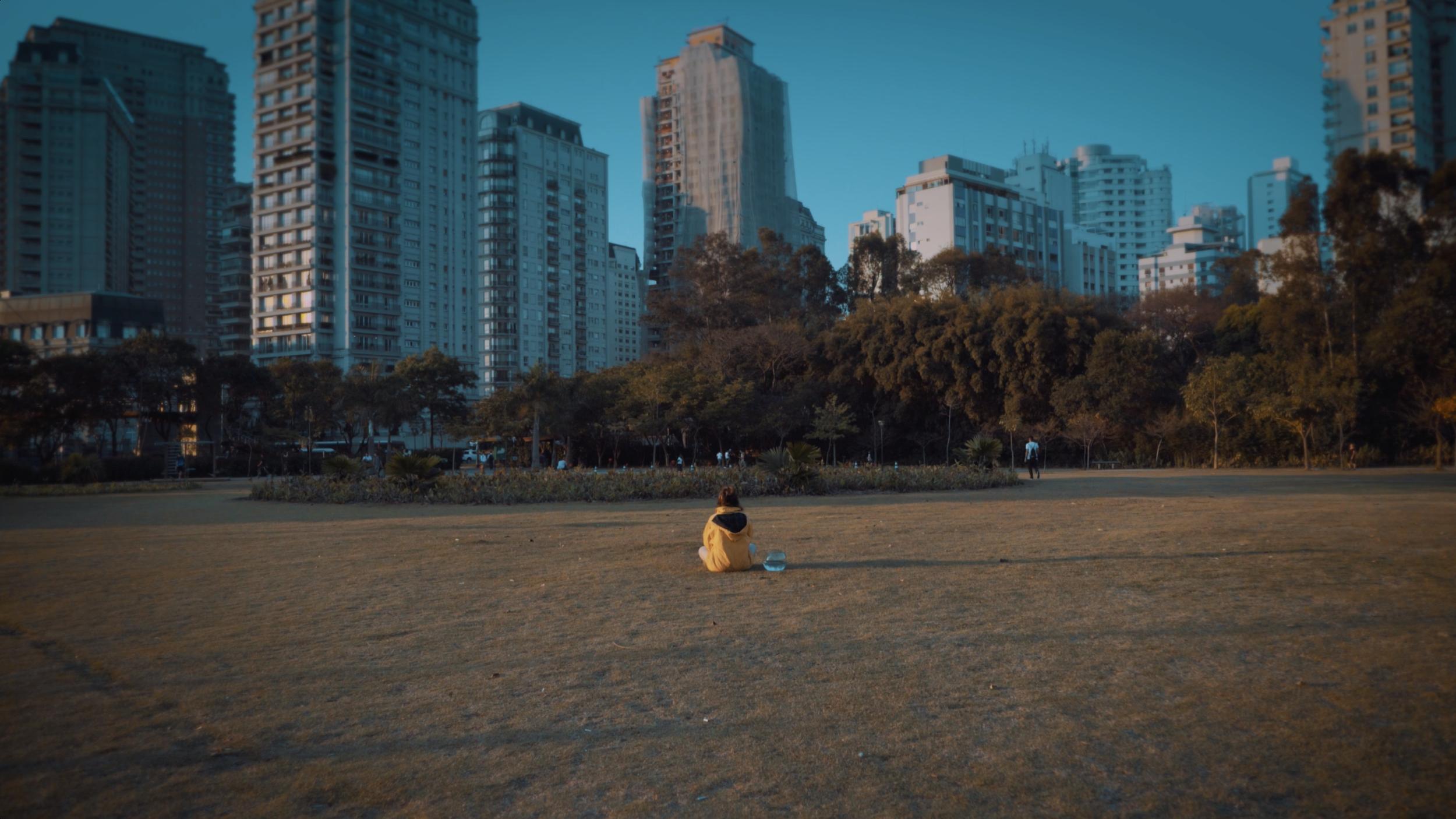 Screen Shot 2018-11-01 at 8.36.37 PM.png