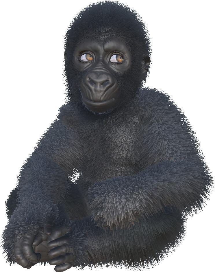 Gorillas-AR-game-ellen-degeneres.png