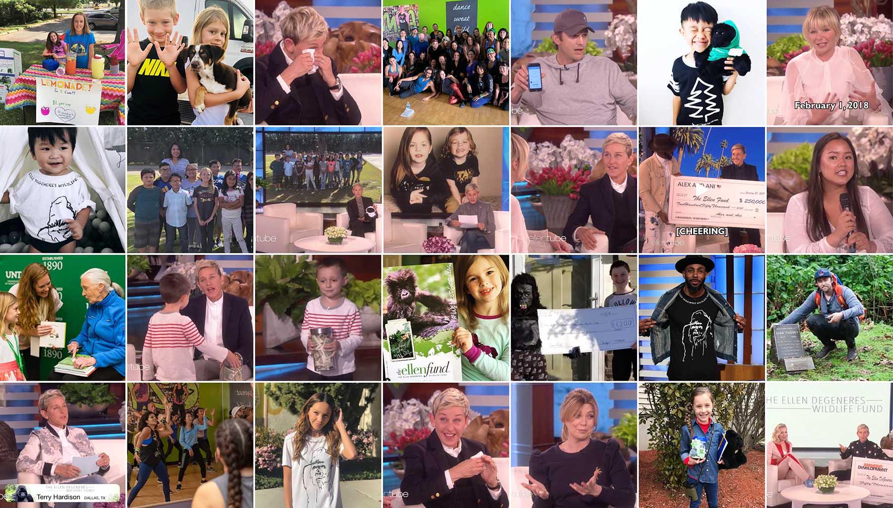 Ellen Fan Collage 2019 May v1 -web.jpg