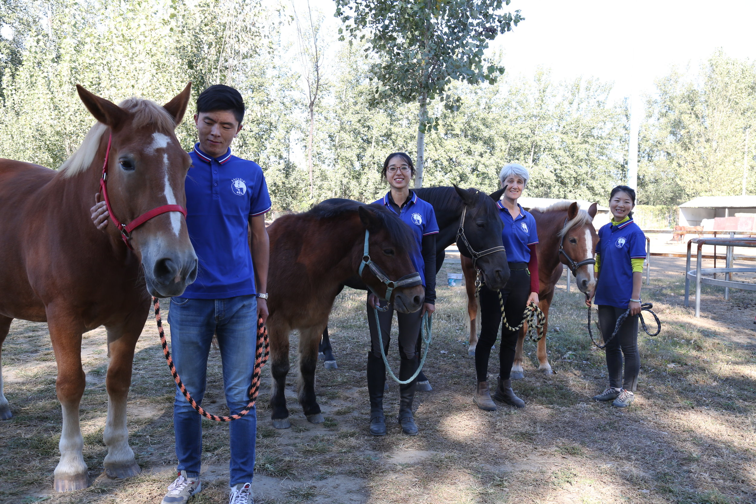 The HOPE Team and Horses