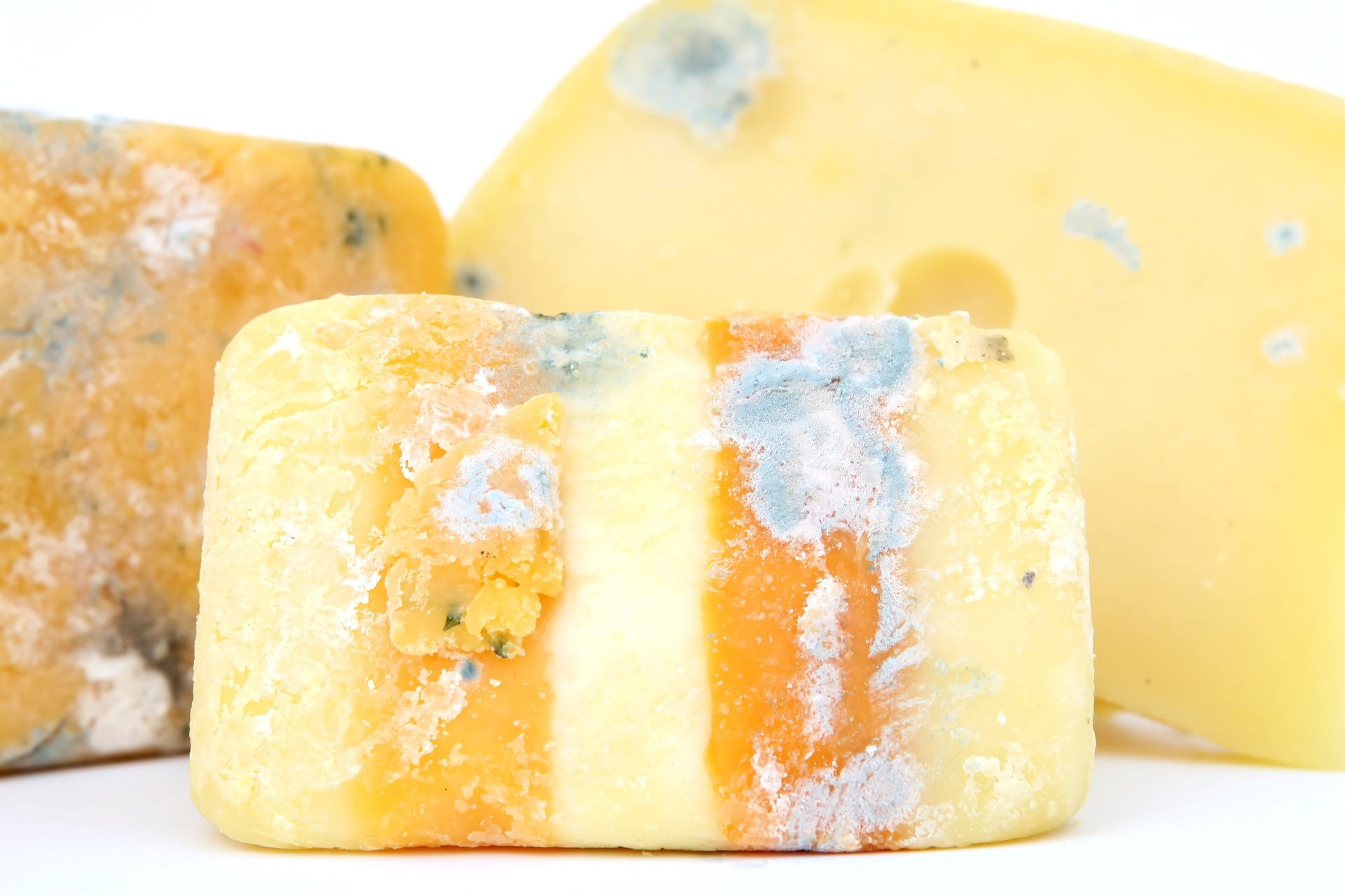 Spoilage of cheese -