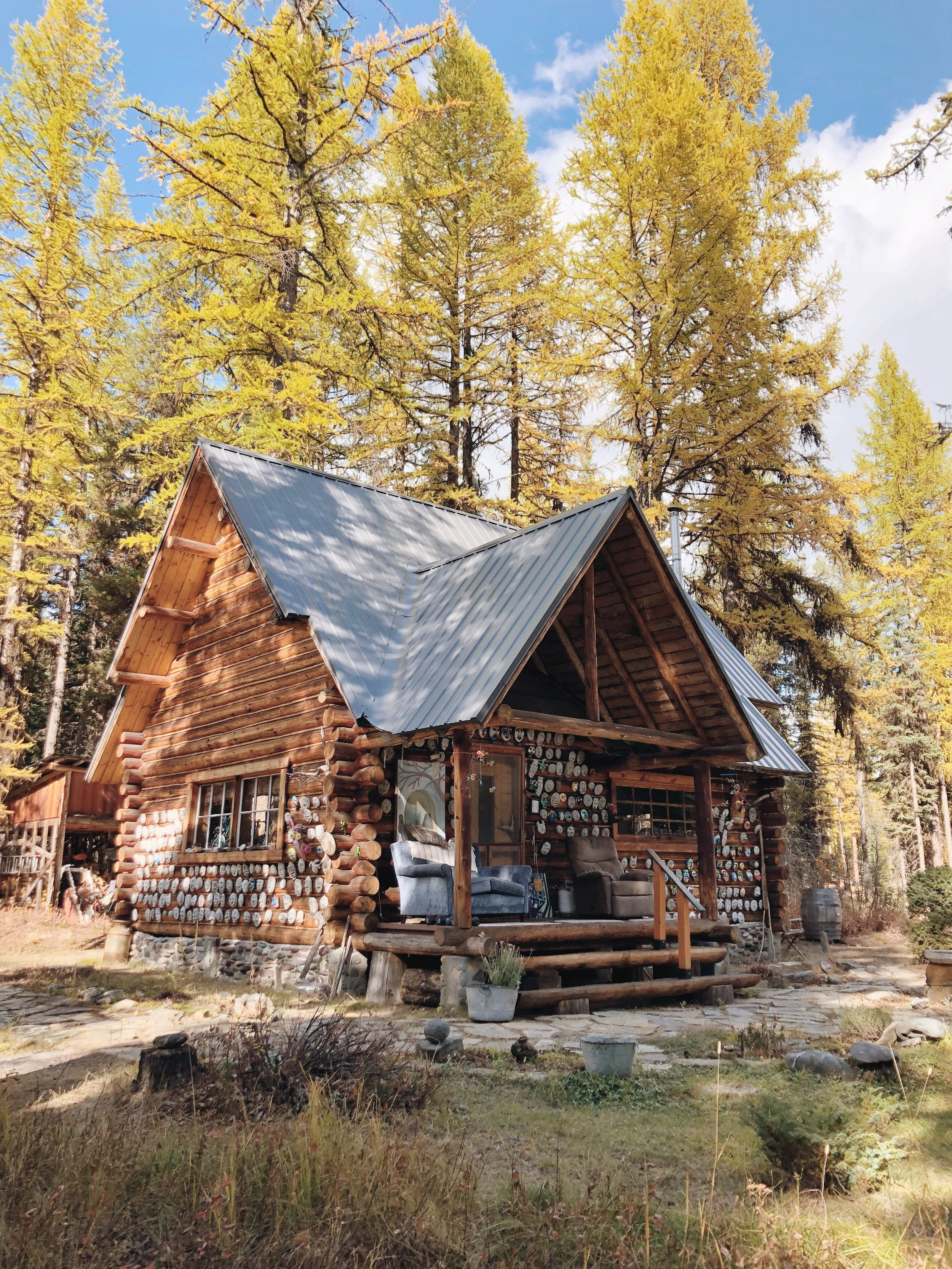 Peter's log cabin is positioned perfectly among the trees.