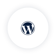Wordpress_plugin.png