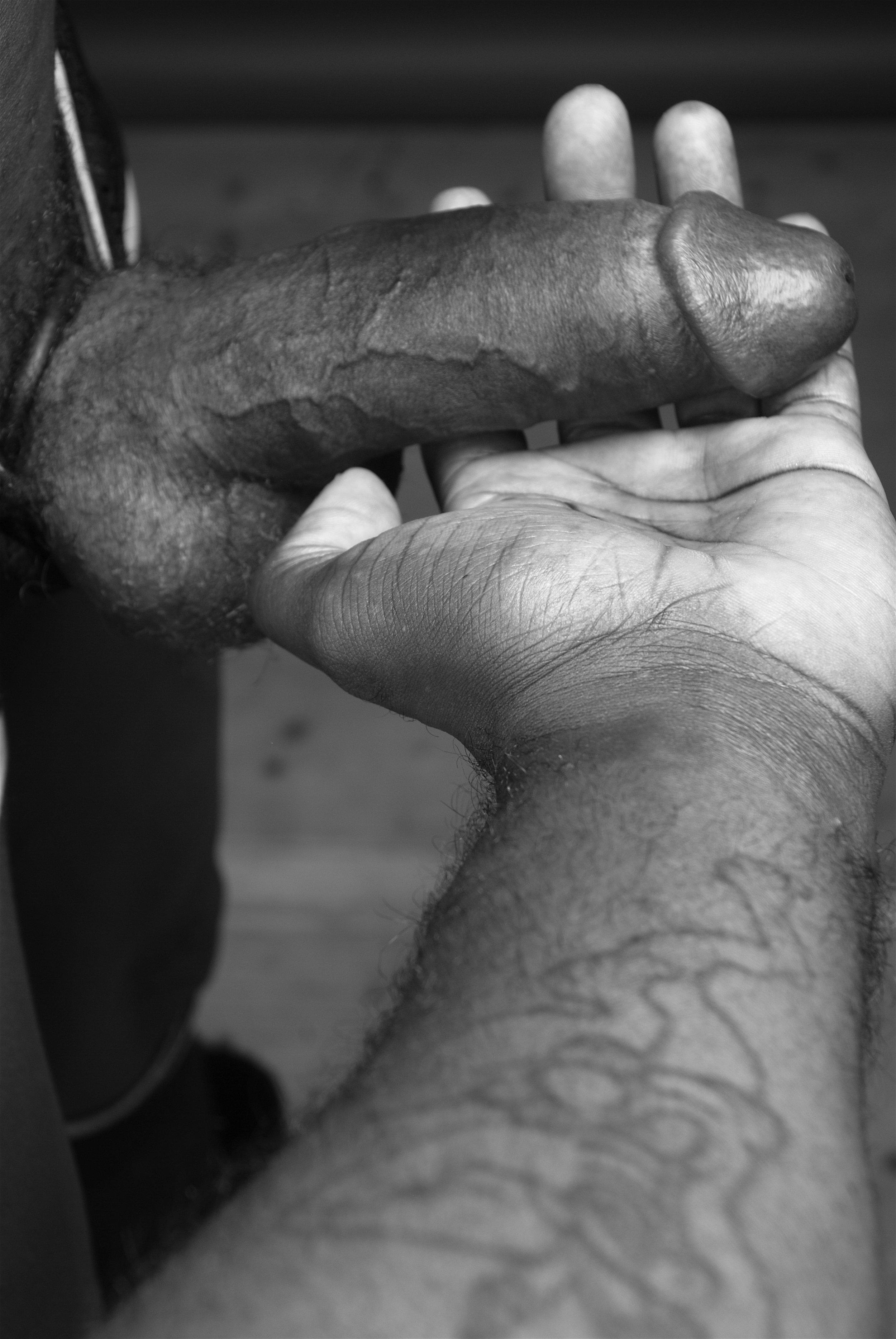 Ajamu's hand holding Dick -Image 5  2015.JPG