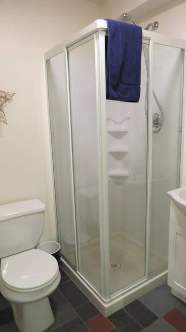 basement bath.jpg