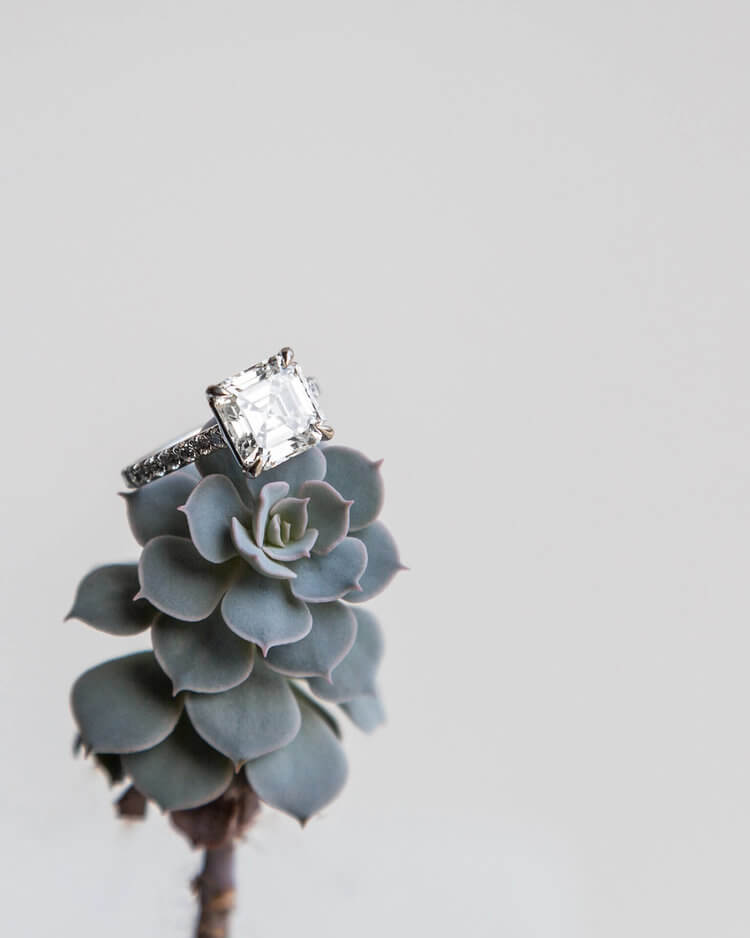 bogo-jewelry-ring-on-succulent.jpg