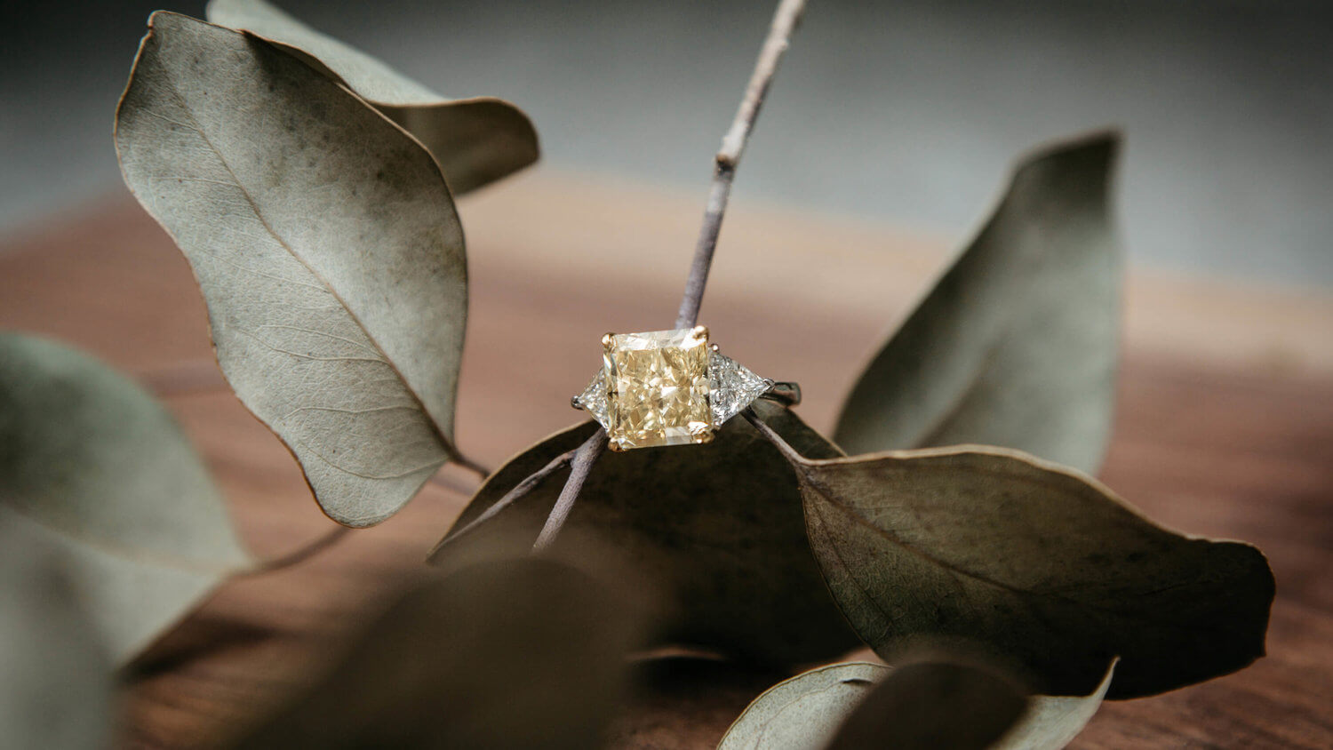 bogo-jewelry-photography-ring-leaves.jpg